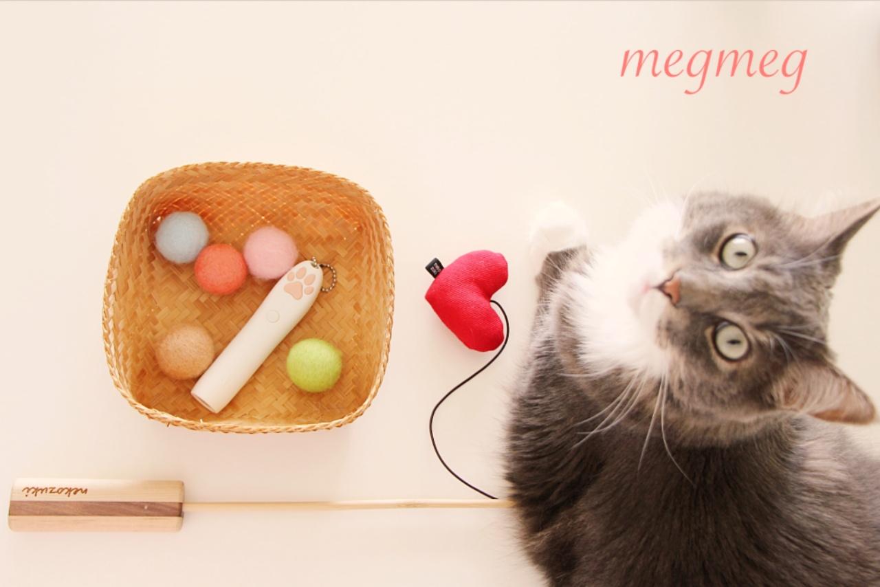 猫の愛用品