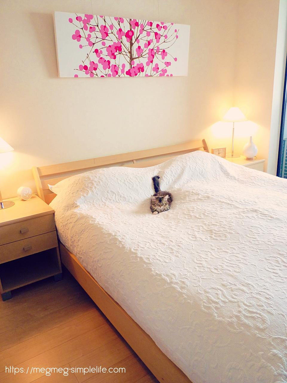 ベッドルームと猫